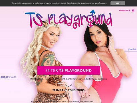 TS Playground Thumbnail